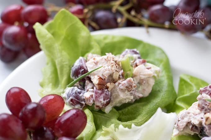 Delicious Chicken Salad with Grapes on a lettuce leaf
