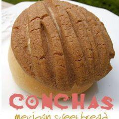 A close up photo of a concha.