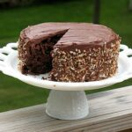 Chocolate Sauerkraut Cake