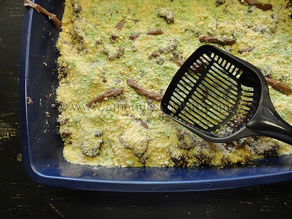 Kitty Litter Cake - gross Halloween party food