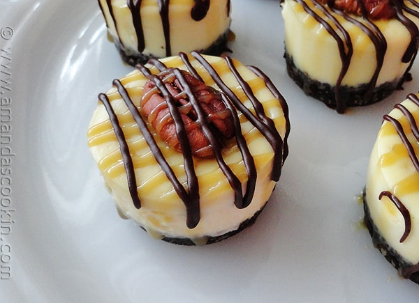 A close up photo of mini turtle cheesecakes.