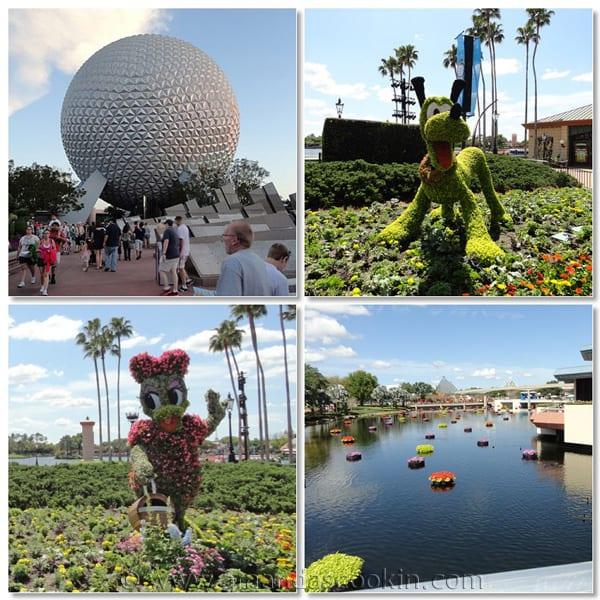 Food Blog Forum: Orlando, Disney, and a Heart Felt Thank You
