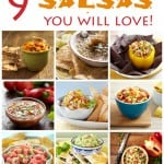 9 Salsa Recipes You Will Love! http://mvb.me/s/89afd3