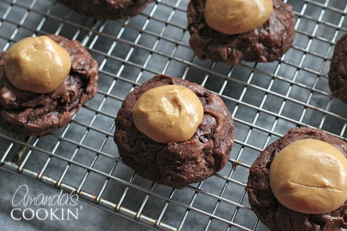 Buckeye Brownie Cookies - Peanut butter and brownies together in an amazing cookie! If you like buckeye candy, then these Buckeye Brownie Cookies are a must make!