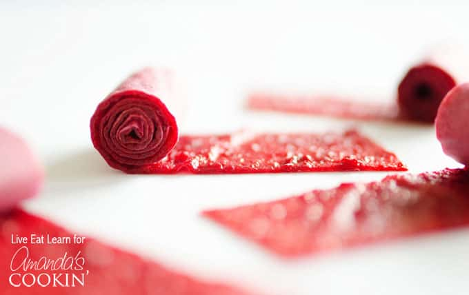 Learn how easy it is to make homemade fruit roll ups! We've used plums, but you can experiment with other fruits for your homemade fruit roll ups too!