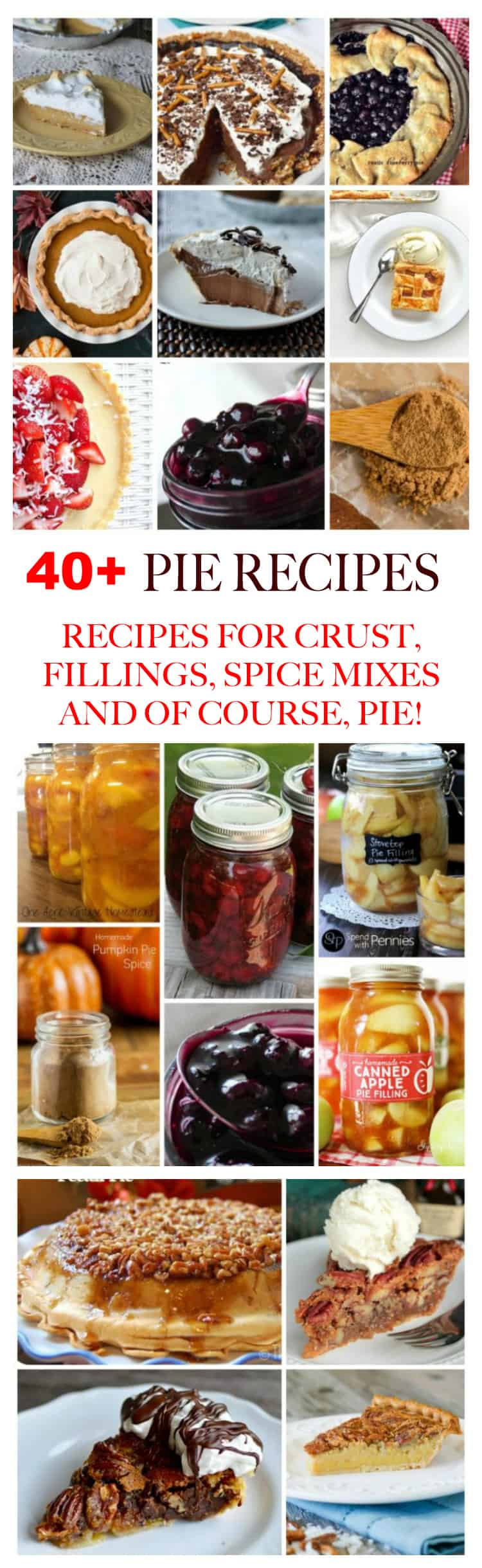 The holidays aren't the holidays without homemade pie. Pie recipes include fruit pie, cream pie, pumpkin and pecan pie, plus recipes for filing and crust! This is an excellent resource for all things pie!