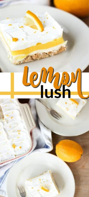 lemon lush pin image