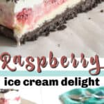 raspberry ice cream delight pin image