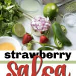 strawberry salsa pin image