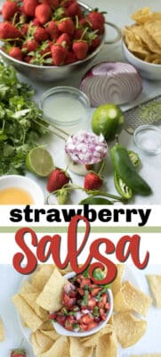strawberry salsa pin image