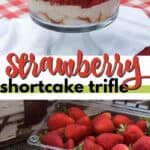 strawberry shortcake trifle pin image
