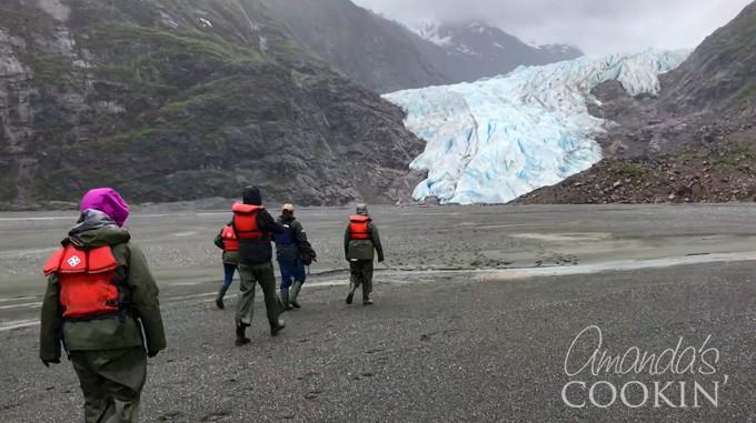 davidson glacier trek