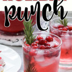 cranberry holiday punch pin image