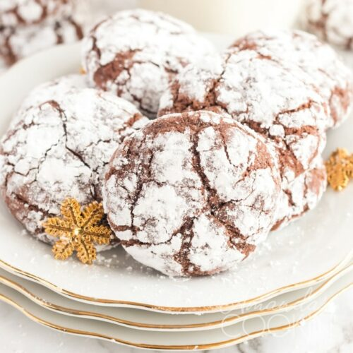chocolate snow cookies