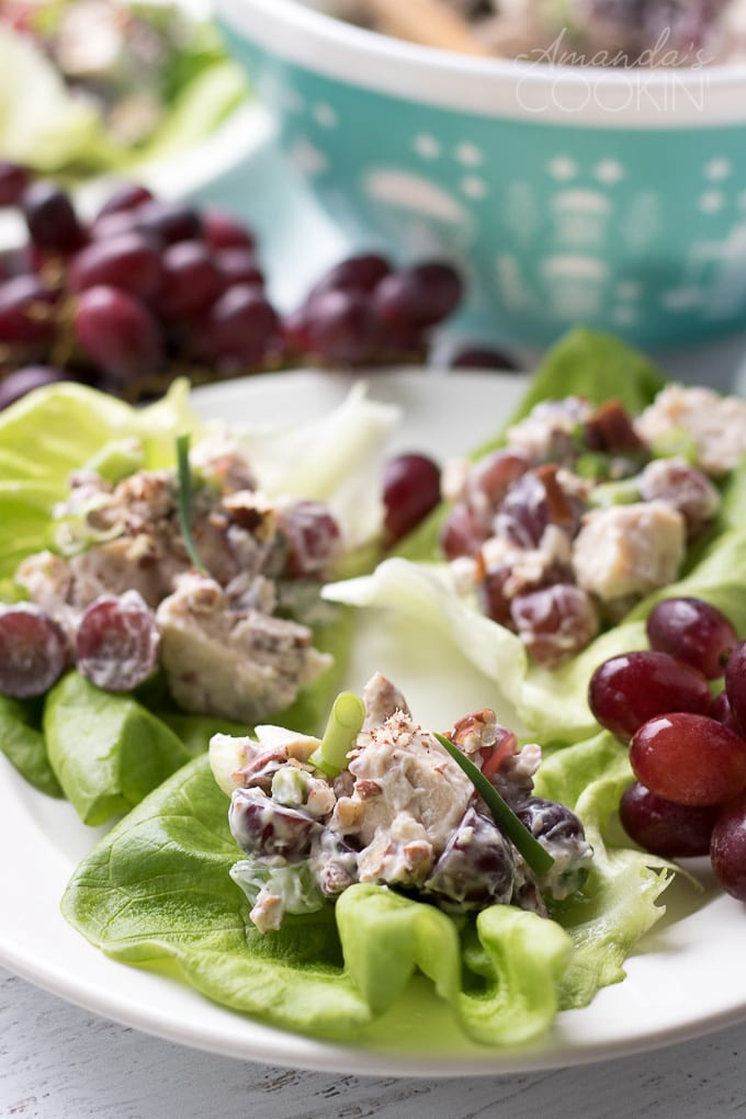 chicken salad with grapes on a bed of lettuce
