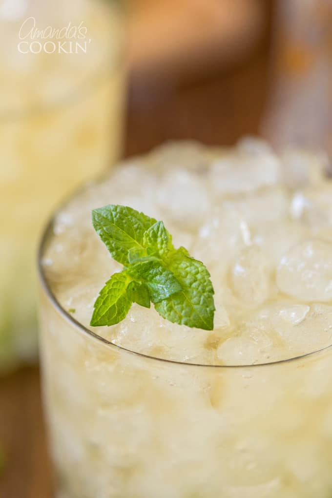 close up photo of Mint Julep