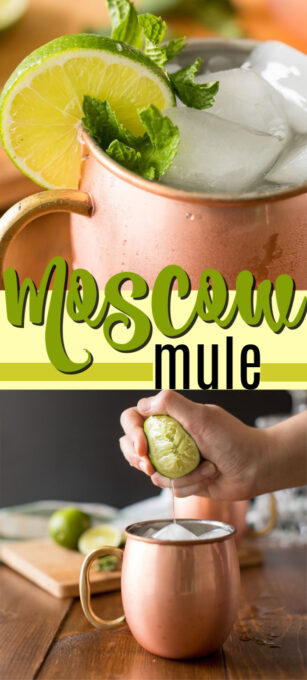 moscow mule pin image