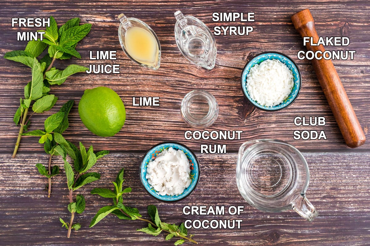 labeled ingredients for coconut mojito