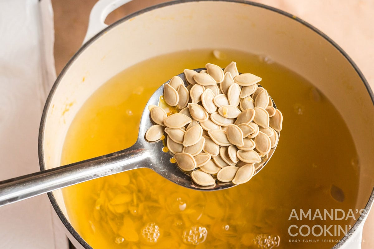 ladle full of pumpkin seeds
