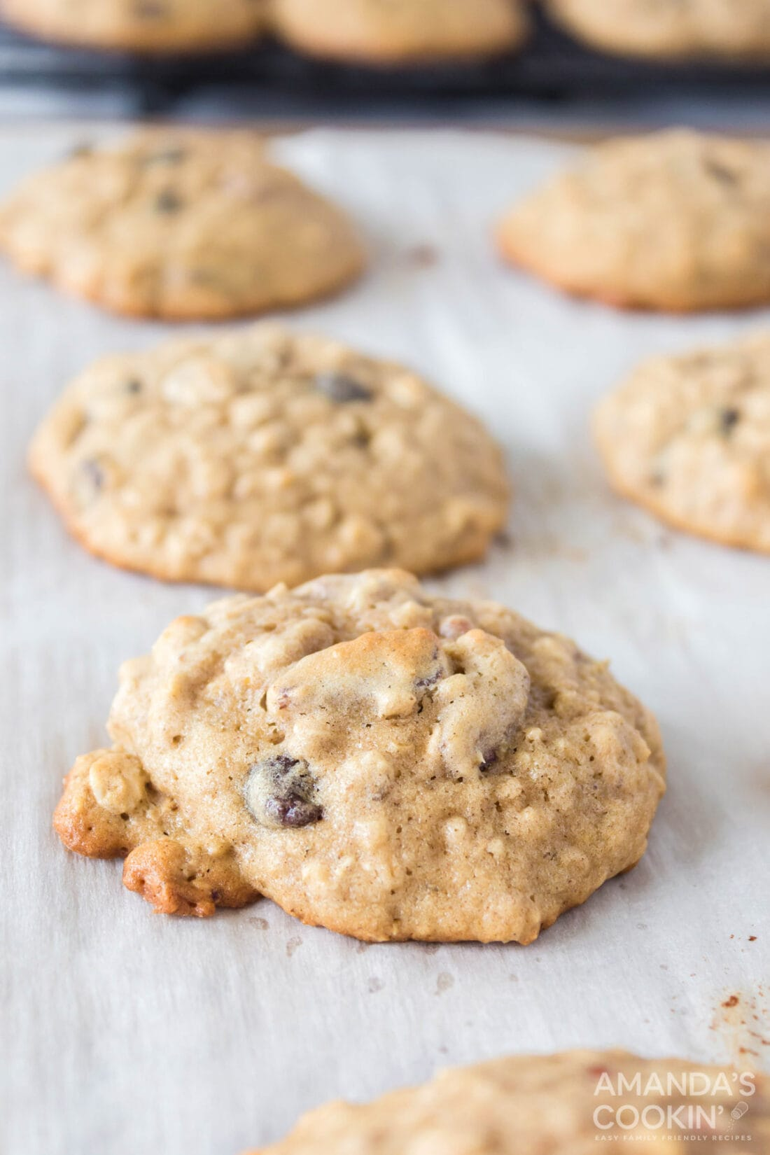 Oatmeal Cookies on parchment