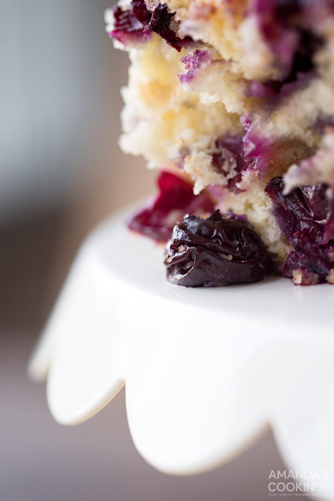 extreme closeup of blueberry cake