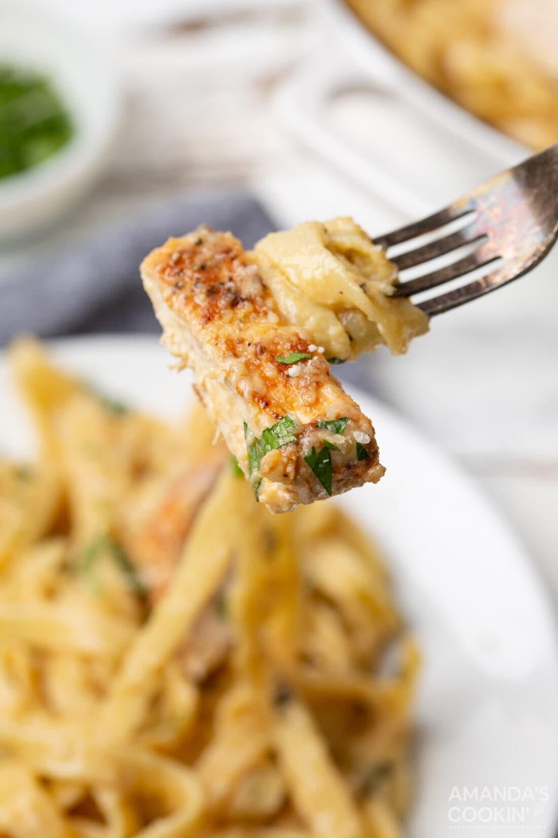 Chicken Alfredo on a fork