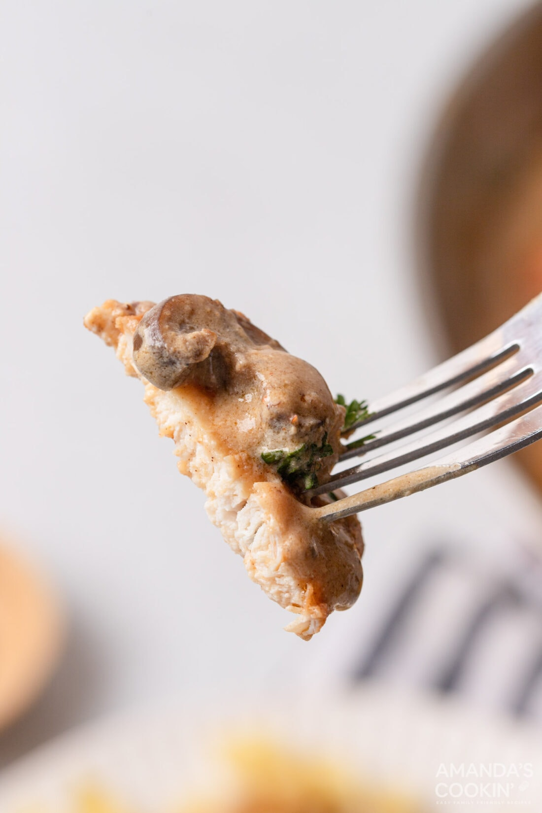 fork of Chicken Stroganoff
